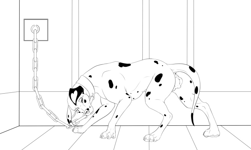 2018 4_toes all_fours anatomically_correct animal_genitalia animal_pussy anus bondage bondage bound canid canine canine_pussy canis chains claws collar dalmatian digital_media_(artwork) digitigrade domestic_dog dottipink female feral fur hi_res hindpaw looking_at_viewer mammal paws psy101 pussy simple_background solo spots spotted_fur toe_claws toes