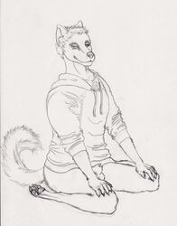 4_toes anthro ass balls black_and_white bottomless ass canine canine_penis claws clothing digitigrade flaccid hindpaw kneeling looking_at_viewer male monochrome paws penis semiotica sheath solo solo_male spreading sweater thighs