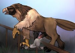 absurd_res ahe_gao anal animal_genitalia animal_penis anthro anthro_on_feral ass_up avian balls beak big_dom_small_sub big_penis bird brown_eyes claws crane duo eagle equine_penis feathers feral fluffy foot_on_head hi_res hippogryph hooves huge_cock hybrid leaning looking_pleasured male male/male penis philippine_eagle pinned pirate_eagle sex size_difference tail_feathers talons tight_fit torakuta zoophilia