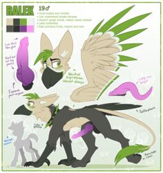 2018 absurd_res all_fours avian balls beak black_balls black_border border claws collar digital_media_(artwork) english_text fan_character feathered_wings feathers feral green_eyes green_feathers gryphon hi_res inner_ear_fluff knot male model_sheet pawpads penis ralek_(mlp) ralekarts spiked_collar spikes tail_tuft talons text tuft wings