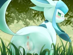 1girl 3sthrees all_fours anus ass blue_body blue_eyes blue_fur blush clitoris ears_back eeveelution female female_only feral fur furry glaceon grass green_eyes half-closed_eyes hi_res leaf long_ears nintendo nude outdoors peeing pokémon_(species) pokemon pokemon_dppt presenting presenting_hindquarters pussy raised_tail rear_view snout solo tail_aside thigh_gap urine video_games
