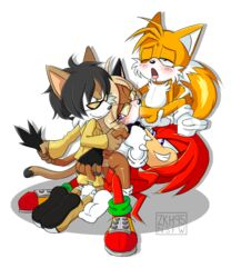 1girl 3boys all_three_filled anal anthro ass balls black_hair black_nose blonde_hair blue_eyes blush brown_fur canine cat_tail chest_tuft clothing echidna fan_character feet feline fellatio female fingerless_gloves foursome fox from_behind from_behind_position glasses gloves green_eyes group group_sex interspecies kneeling knuckles_the_echidna legs looking_pleasured lying male mammal monotreme multiple_boys multiple_males multiple_penises multiple_tails nextime nude one_eye_closed open_mouth oral original original_character penetration penis purple_eyes red_fur red_hair red_penis sega sex shoes smile sonic_(series) straight tail tails teeth thighs tongue tongue_out transparent_background triple_penetration tuft two_tone_tail vaginal_penetration white_fur white_gloves yellow_fur yellow_hair yellow_penis zkh59