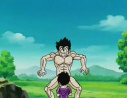 abs animated biceps canon_couple cfnm dragon_ball dragon_ball_z muscles muscular_male nippleless_male oral_sex pecs son_gohan straight videl