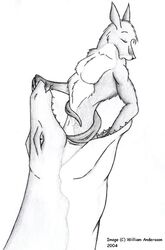 ambiguous_gender ambiguous_species anthro armorine black_and_white furry kangaroo lizard male mammal monochrome navel oral_vore pleasured_expression reptile snake tagme tongue vore william_andersson willing_vore
