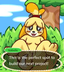 2018 animal_crossing anthro anus ass blush breasts canine canine character_name dialogue digital_media_(artwork) english_text female fur hair hi_res isabelle_(animal_crossing) looking_at_viewer lying mammal nintendo nipples nude nulloffset on_back open_mouth outside presenting presenting_anus presenting_hindquarters presenting_pussy pussy shih_tzu sky smile solo speech_bubble spread_legs spreading text tongue tree video_games yellow_fur