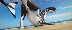 2018 3_toes 3d_(artwork) absurd_res anus aquatic_dragon ass cetacean claws detailed_background digital_media_(artwork) dragon female half-closed_eyes hi_res hybrid looking_at_viewer looking_back mammal marine miraroo orca outside presenting presenting_hindquarters pussy pussy_juice seductive solo toes tongue whale whiteperson