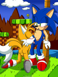 2018 2_tails 2boys against_tree all_fours anthro anthro_on_anthro anus balls black_nose blue_balls blue_eyes blue_fur blue_penis blush canine clothing duo fellatio fox fur furry gloves green_eyes green_hill_zone hedgehog hedgehoglove hq humanoid_penis interspecies licking looking_down looking_up male male_only mammal multi_tail on_ground open_mouth oral outside penis penis_lick red_footwear running_shoes sex sonic_(series) sonic_the_hedgehog tails tongue tongue_out tree white_fur white_gloves yaoi yellow_balls yellow_fur yellow_penis