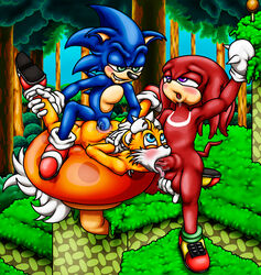 anal anus ball_fondling balls furry_only gay happyanthro knuckles_the_echidna no_humans oral penis sonic_(series) sonic_the_hedgehog spitroast tails threesome yaoi