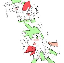 2boys blush disembodied_penis furry gay green_eyes japanese_text legendary_pokémon male male_only nintendo pasaran penis pokémon_(species) pokemon pokemon_dppt shaymin sweat text translation_request video_games yaoi