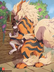 anal anthro anthro_on_feral arcanine big_dom_small_sub blue_eyes blush canine duo feral flower fur knot larger_male male male/male mammal nintendo orange_fur patto plant pokémon_(species) pokemon rape_face sex size_difference smaller_male video_games zoophilia