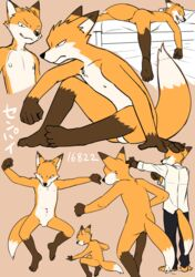 2016 action_pose anthro balls barefoot bed canine casual_nudity clothing digital_media_(artwork) dress_shirt flat_colors fox front_view grin guide_lines japanese_text jumping male mammal manmosu_marimo multiple_poses navel nipples nude on_bed plantigrade pose rear_view senior_fox shirt sitting sketch_page sleeping smile solo solo_male text walking