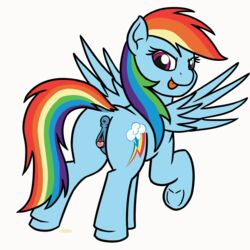 2018 animated anus ass clitoral_winking clitoris cutie_mark equine female feral friendship_is_magic looking_at_viewer looking_back mammal mkogwheel multicolored_hair my_little_pony pegasus pussy pussy_juice rainbow_dash_(mlp) rainbow_hair solo wings