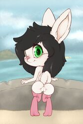 2018 absurd_res alex_cydragon anthro anus ass beach big_eyes biped blush chibi clothing digital_media_(artwork) eyelashes female fluffy fluffy_tail fur green_eyes hair hi_res its-spot lagomorph legwear looking_at_viewer looking_back mammal nude pink_nose presenting presenting_hindquarters pussy rabbit rear_view seaside simple_background smile solo standing stockings thigh_highs white_fur