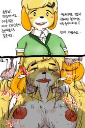 animal_crossing anthro blood_from_nose blush breasts clothing condom cum dialogue digital_media_(artwork) female filled_condom forced fur hakiahki hi_res isabelle_(animal_crossing) korean_text male male/female nintendo open_mouth orgasm penis rape rough_sex sex sweat tears teeth text translation_request video_games