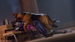 3d ahe_gao blender canine female from_behind male nextr3d overwatch sex widowmaker zoophilia