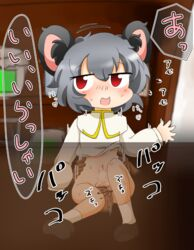 artist_request blush censored cookie_(touhou) desk gray_hair mouse_ears nazrin nyn_(cookie) penetration red_eyes shoes simple_background socks touhou translation_request vaginal_penetration