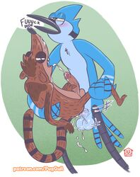 anal balls carrying cartoon_network cum cum_in_ass furry_only gay lifted masturbation mordecai_(regular_show) no_humans penis regular_show rigby_(regular_show) size_difference thatpuggy yaoi