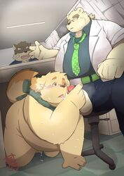 96panda_hk blush canine cum cum_in_mouth cum_inside cusith eyewear furry_only glasses hi_res male mammal moritaka necktie no_humans nude oral overweight polar_bear public rave_(tas) scarf sex slightly_chubby tokyo_afterschool_summoners under_the_table ursine video_games yaoi