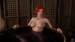 1girl 3d areolae blender breasts female female_only green_eyes looking_at_viewer nipples nude pewposterous pussy red_hair solo the_witcher the_witcher_3 the_witcher_3:_wild_hunt triss_merigold