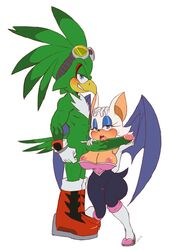 2d avian bluechika blush boots breasts camel_toe chiropteran clothing color duo eyewear feathers female footwear gloves goggles headgear headwear humanoid_penis jet_the_hawk male male/female mammal penis rouge_the_bat sega sonic_(series) sonic_riders white_background wings