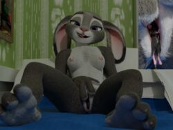3d_(artwork) anthro blender(software) breasts cycles digital_media_(artwork) disney feet female hi_res judy_hopps lagomorph macro mammal micro mouse nude open_mouth playful pocket_jabari ponlets pussy rabbit rodent tongue tongue_out unbirthing vore zootopia