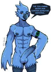 2019 abs anthro areola armband athletic avian balls beak big_areola big_nipples big_penis bird blue_beak blue_eyes blue_feathers blue_nipples blue_penis blush clothing dialogue digital_media_(artwork) english_text erection feathers hand_on_hip hi_res humanoid_penis looking_at_viewer male male_focus male_only meme navel nipples nude pecs penis precum simple_background sin_bruh solo solo_male standing text tweetfur twitter wings