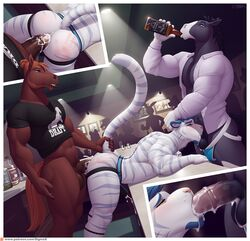 2019 alcohol anal anal_sex anthro anthro_on_anthro ass balls beverage blush bottomless bulge clothed clothing cum cum_in_ass cum_in_mouth cum_inside cum_on_balls cum_through_clothing cum_while_penetrated cumshot deep_throat drinking ejaculation equid equine erection felid feline fellatio fur group group_sex hair hands-free horse humanoid_hands inside interspecies jockstrap jodira male male/male mammal medial_ring mostly_nude muscular muscular_male oral orgasm penetration penis public raised_tail sex shirt sigma_x spank_marks spitroast striped_fur stripes tahoe threesome two_doms_one_sub underwear url vein white_fur