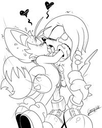 furry gay green_hill kissing knuckles_the_echidna male sonic_(series) tails