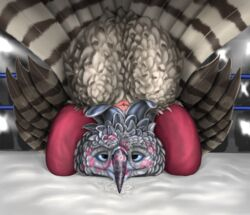 absurd_res after_sex anatomically_correct animal_genitalia avian bird cloaca clothing defeat domination duo_focus eagle female feral ferobird group harpy_eagle hi_res leggings legwear lingerie lipstick makeup male male/female martial_eagle pussy_juice wrestling