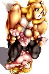 1futa 1girls ahe_gao animal_crossing animal_genitalia animal_penis anthro areolae ass ass_cutout big_ass big_breasts big_penis breasts breath_of_the_wild brown_eyes canine canine_penis censored dickgirl dog dog_ears dog_tail easy_access elf endured_face erection fucked_silly fur furry furry_tail futa_on_female futanari isabelle_(animal_crossing) large_ass large_breasts larger_female leggings looking_pleasured mamimi_(artist) mounting nipples penetration penis perching_position piledriver_position pleasure_face princess_zelda pussy pussy_juice sex size_difference small_dom_big_sub smaller_futanari super_smash_bros. the_legend_of_zelda torn_clothes vagina vaginal_penetration wet wet_pussy