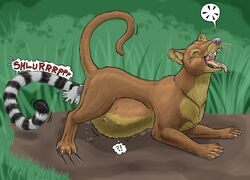 2011 ?! all_fours ass_up bent_over brown_fur claws closed_eyes euplerid female female_pred feral forced fossa fur grass lemur mammal orgasm outside primate pussy_juice_drip savanna simple_background stomach_bulge strega teats tongue tongue_out traditional_media_(artwork) unbirthing vaginal_penetration vore