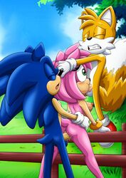 1girls 2boys amy_rose bbmbbf blue_fur blue_hair breasts closed_eyes cum cum_in_pussy cum_inside fellatio female grabbing green_eyes mobius_unleashed oral palcomix penis pink_fur pink_hair pussy sex sonic_(series) sonic_the_hedgehog spitroast tails vagina vaginal_penetration wet wet_pussy yellow_fur yellow_hair